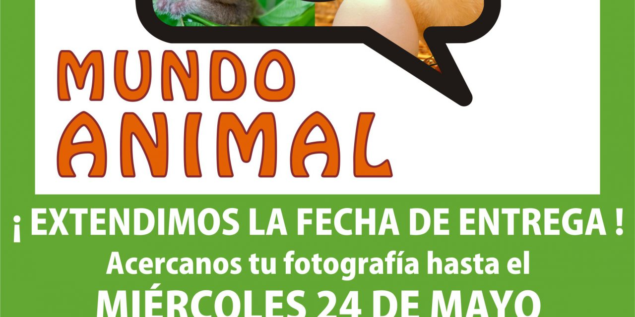"II CONCURSO FOTOGRÁFICO ""MUNDO ANIMAL"""