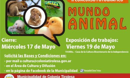 II Concurso Fotográfico MUNDO ANIMAL