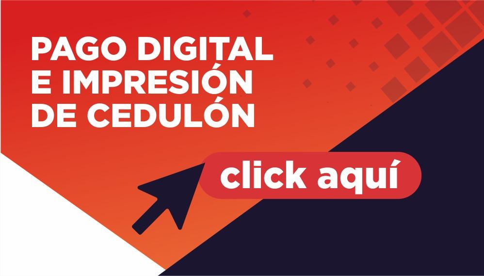 Logo Cedulon